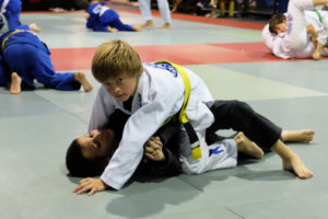 Harrisburg PA Brazilian Jiu Jitsu, MMA and Muay Thai